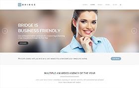 Bridge_Business
